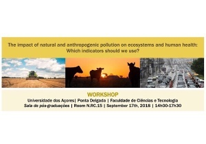 """Workshop """"The impact of natural and anthropogenic pollution on ecosystems and human health: which indicators should we use?"""" 